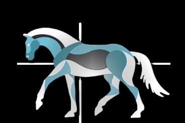 Paard en Balans